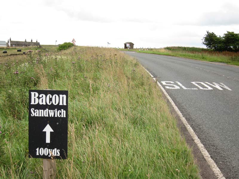 bacon-sandwich-slow